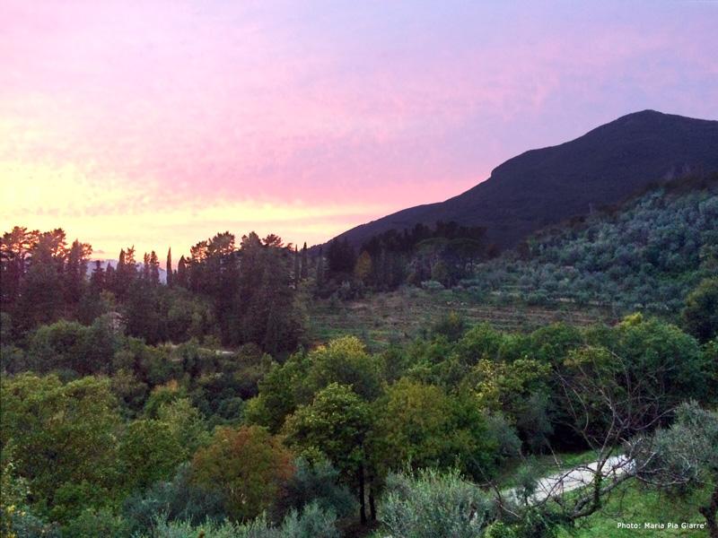 Gallena-Tuscany