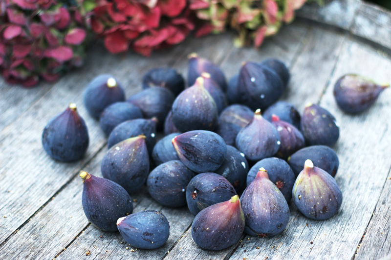 Perfectly ripened purple figs rest on top of a weathered wine barrel in this California garden.